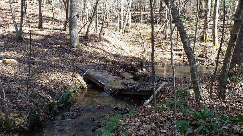 Trail Repair 02